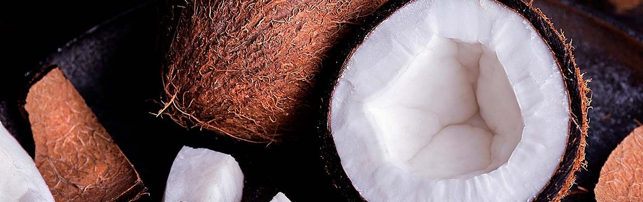 coconut ingredient the body shop
